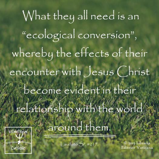 LS - ecological conversion