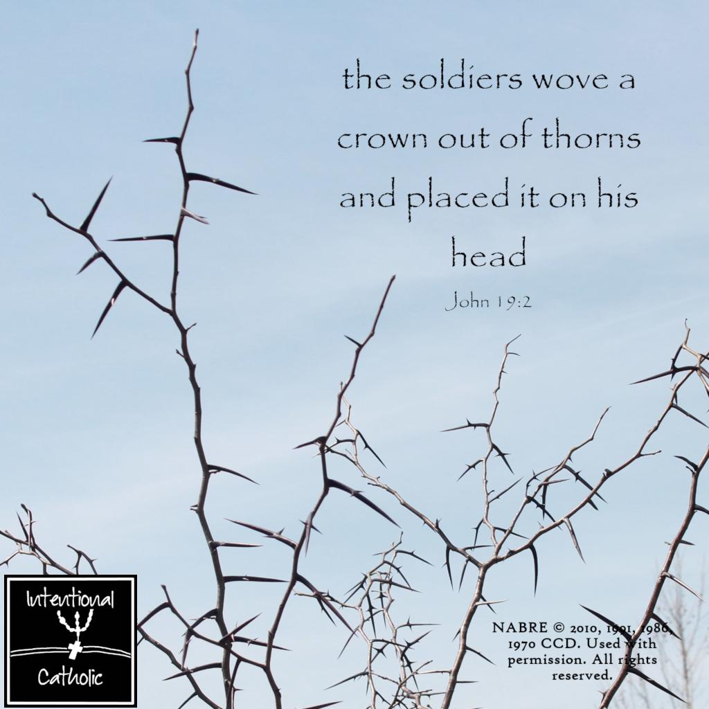 NAB Crown of Thorns